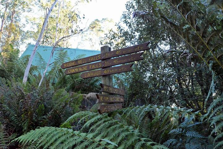 Bushwalking Cradle Mountain