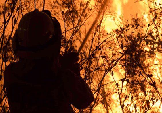 Tasmanian Bushfire