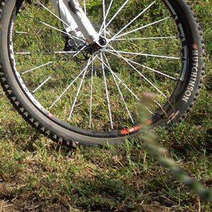 Lemonthyme Mountain Bikes